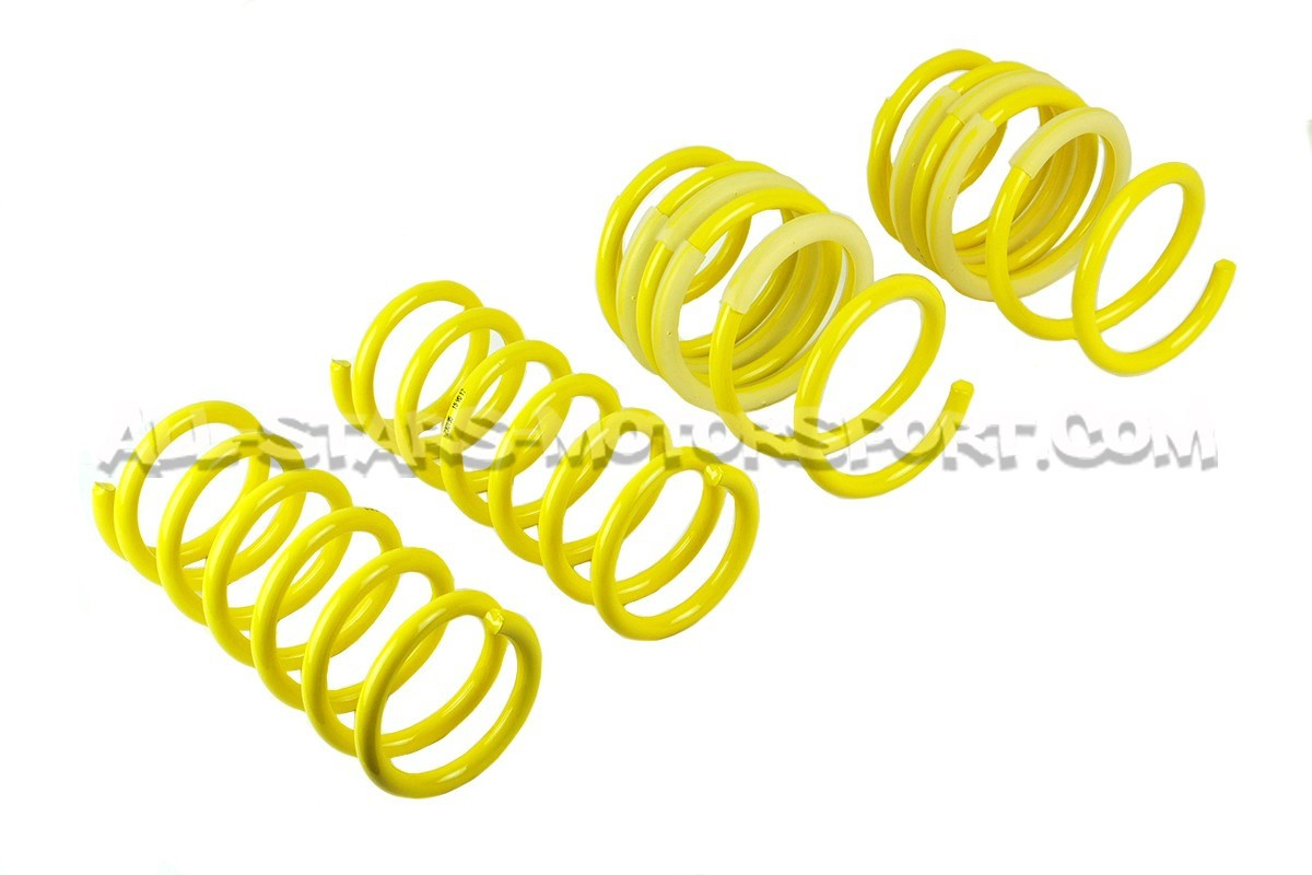 Ford Focus 3 RS ST Suspension Springs