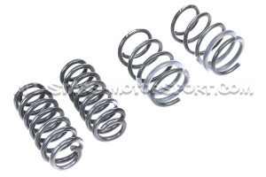 Audi RS3 8V Saloon Magnetic Ride Racingline Sport Springs