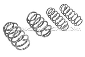 Polo 6R and 6C GTi / Fabia 5J Racingline Sport Springs