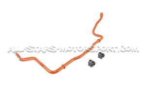Audi RS3 8V FL / TTRS 8S Neuspeed Rear Sway Bar Kit