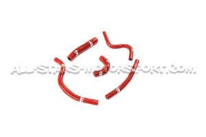 Megane 2 RS Forge Ancillary Hoses Kit
