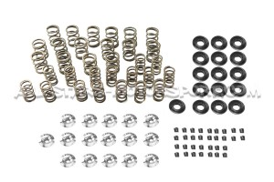 Ferrea Valve Springs and Retainers Kit for Honda Civic EG / EK 1.6 VTI B16