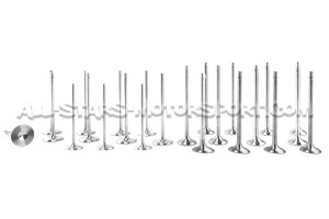 Ferrea Competition Plus Engine Valves x24 for BMW M3 F80 / M4 F8x / M2 Comp S55
