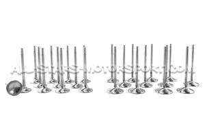 Ferrea Competition Plus Engine Valves x24 for Nissan R35 GTR