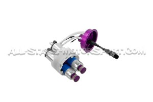 Audi S4 / RS4 B5 THE Tuner In Tank Double Fuel Pump Kit