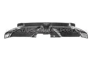 Audi RS4 B8 Eventuri Carbon Fiber Slam Panel Cover